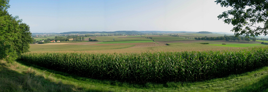 Panorama looking south of Wennenberg