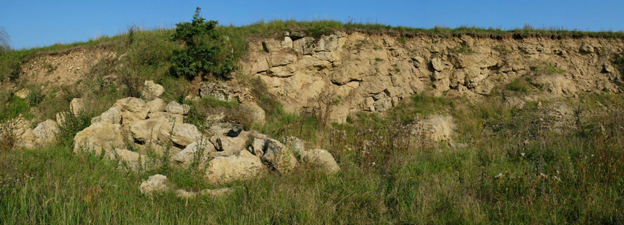 Old suevite quarry at Sternbach