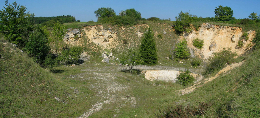 Old limestone quarry at Iggenhausen