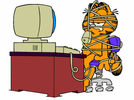 Garfield at the Computer