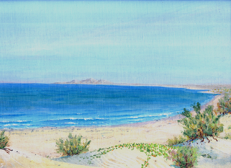 "036 - The Gulf of California at ""Sandy Beach"", northwest of Rocky Point"