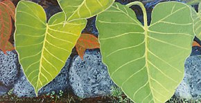 269 - Tropical leaves
