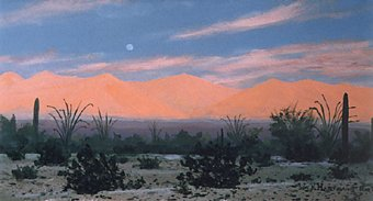 492 - Suset Glow on Mohawk Mts., SW Arizona.