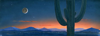 440 - November 1995, Stars Above and Stars Below: Fantasia on Sonoran Desert